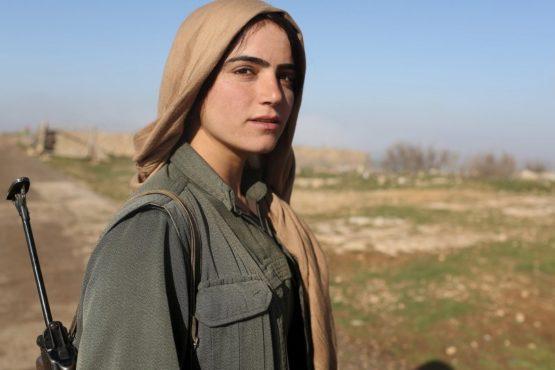 curdas